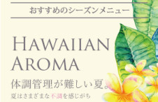 Hawaiianaroma_hp